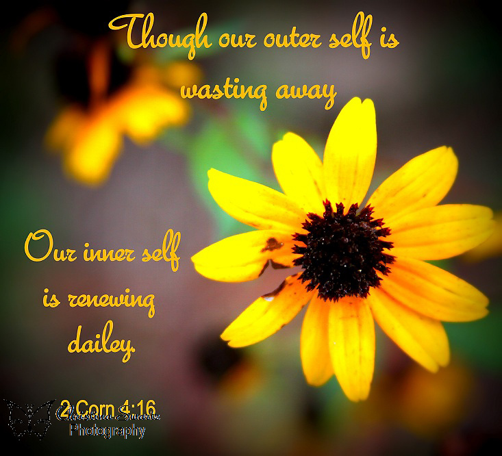"2 Corn 4:16 Bible verse flower. ""Though our outer self is wasting away, our inner self is renewing daily."""