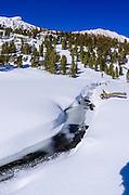 Rock Creek and Mount Starr in winter, John Muir Wilderness, Sierra Nevada Mountains, California  USA