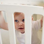 Baby photographs