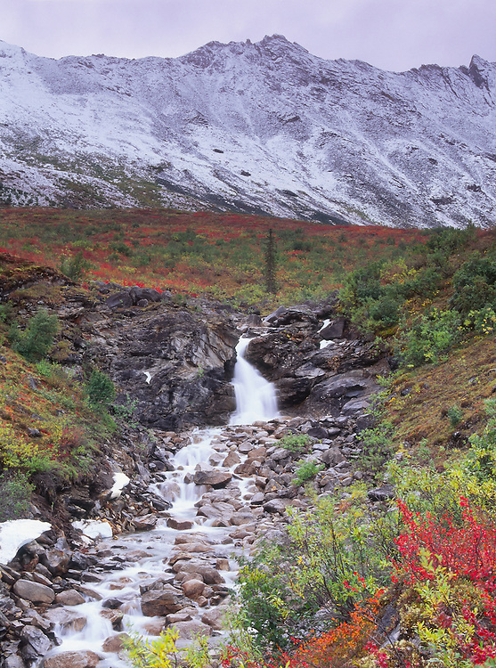 Arrigetch Peaks in Gates of the Arctic National Park in Alaska.  Fall.  Morning.