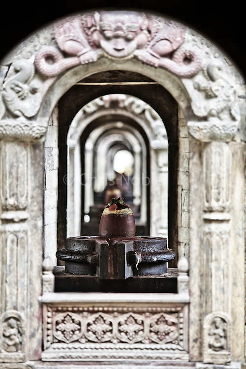 A long row of shrines featuring Shiva's lingam within the female yoni at Kathmandu's Pashupatinath Temple.