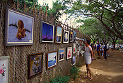 Art at zoo fence, Waikiki, Oahu, Hawaii<br />