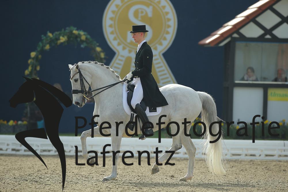 Bachmann, Andersen, Donna Silver<br /> Hagen - Horses and Dreams 2013<br /> Grand Prix<br /> © www.sportfotos-lafrentz.de/Stefan Lafrentz