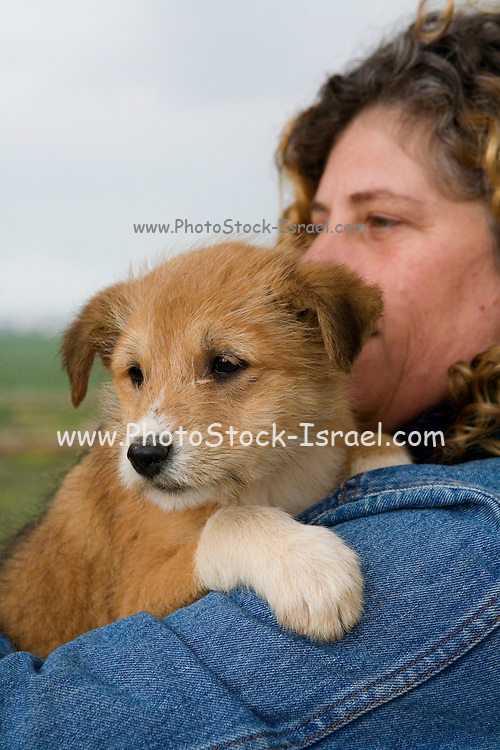 Woman holding puppy - selective focus