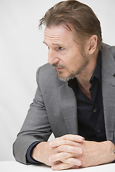 September 10, 2017 - Toronto, California, Canada - Liam Neeson stars in The Man Who Brought Down The White House (Credit Image: © Armando Gallo via ZUMA Studio)