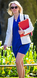 Chief Secretary to the Treasury Elizabeth Truss arrives at 10 Downing Street to attend the weekly cabinet meeting.