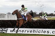 St Patricks Raceday Fontwell Park 19-03-15
