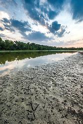 "Bird tracks in mud of drying ephemeral pond,  ""Secret Bird Pond"" near Trinity River Audubon Center, Great Trinity Forest, Dallas, Texas, USA."