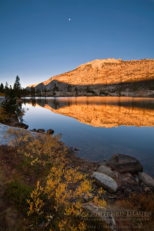 Moon and morning alpenglow on mountain reflected in Boothe Lake, Vogelsang region, Yosemite National Park, California