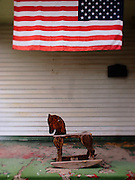 Americana.<br /> <br /> American rocking horse, Ohio, 2011.