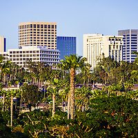 Newport Beach skyline picture. Photo includes Newport Beach office buildings and palm trees. Newport Beach is an affluent city in Orange County California.