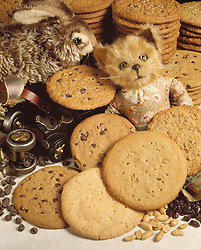 large chocolate chip peanut butter cookies toys roller skates stuffed bear rabbitt animals