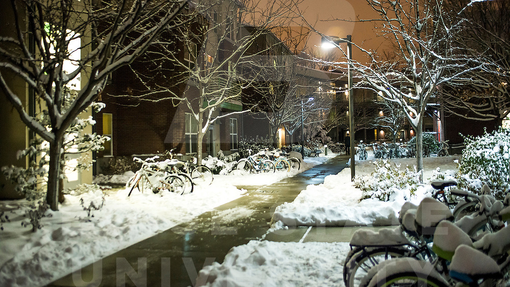 Campus Scene, Night, Winter, Honors College, Campus Housing, Snow, Snow Day, Everett Smith