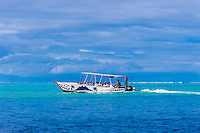 Outrigger boats take tourists to swim with rays and reef sharks, Bora Bora, French Polynesia.