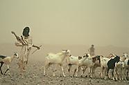 Desert Africa 01