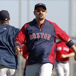 February 19, 2011; Fort Myers, FL, USA; Boston Red Sox first baseman Adrian Gonzalez during spring training at the Player Development Complex.  Mandatory Credit: Derick E. Hingle