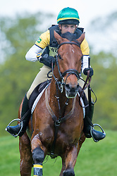 Silva Cury Gabriel, (BRA), Grass Valley<br /> Cross Country<br /> Mitsubishi Motors Badminton Horse Trials - Badminton 2015<br /> © Hippo Foto - Jon Stroud<br /> 09/05/15