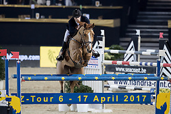 Leemans Thomas, (BEL), Gracchus Dm<br /> CSI2* Ifor Williams Prijs<br /> Vlaanderens Kerstjumping Memorial Eric Wauters<br /> © Dirk Caremans<br /> 27/12/2016