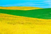 Prairie abstract. Parkbeg. Saskatchewan