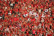FIFA World Cup 2006 - Korea fans