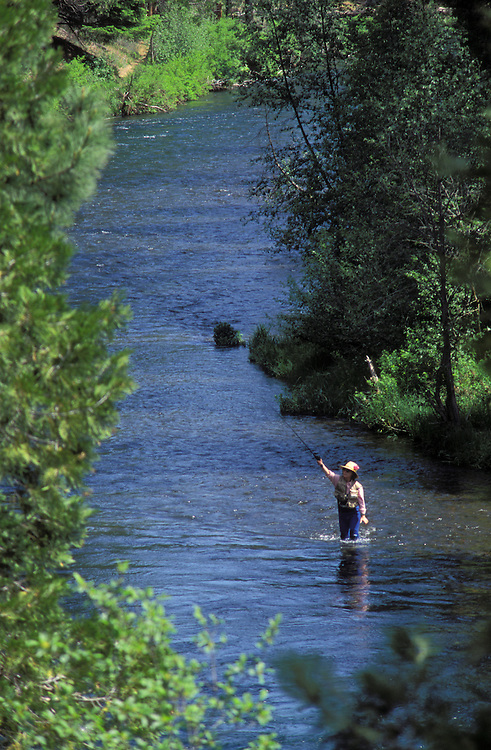 Woman flyfishing on the Metolius River; Deschutes National Forest, Cascade Mountains, central Oregon.