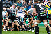 Ospreys scrum half Rhys Webb during the Guinness Pro 12 2017 Round 21 match between Ospreys and Ulster at the Liberty Stadium, Swansea, Wales on 29 April 2017. Photo by Andrew Lewis.