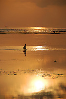 A seaweed gatherer at a breathtakingly beautiful golden dawn in Bali, Indonesia.