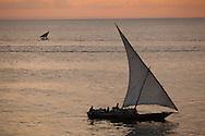 A traditional dhow boat sailing at dusk near Stonetown, Zanzibar, Tanzania.