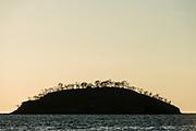 Mariela Islands<br /> Elizabeth Bay<br /> Isabela Island<br /> Galapagos<br /> Ecuador, South America
