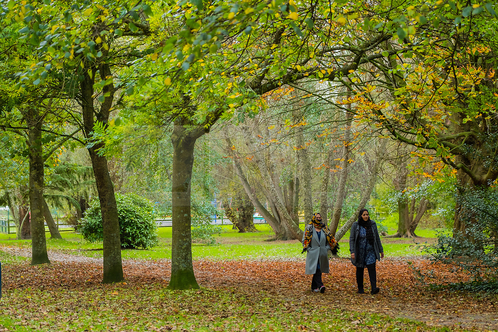 © Licensed to London News Pictures. Aberystwyth, UK. 23/10/2018. People walking and cycling down Plascrug Park in Aberystwyth, as the trees turn myriad shades of yellow and orange on a fine October autumn morning. Photo credit : Keith Morris/LNP