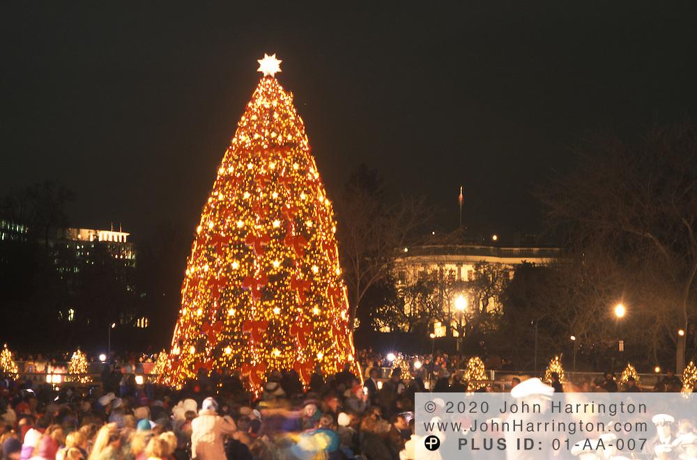 The National Christmas Tree, Washington DC