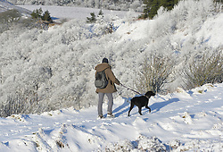 © Licensed to London News Pictures. 15/01/2016. North Yorkshire Moors, UK. A dog walker takes a path through the snow at the Hole of Horcum on the North Yorkshire Moors. Photo credit : Anna Gowthorpe/LNP