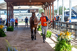 Houtzager Marc, NED, Sterrehofs Calimero<br /> World Equestrian Games - Tryon 2018<br /> © Hippo Foto - Sharon Vandeput<br /> 17/09/2018