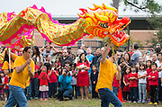 A dragon dance is performed during a groundbreaking ceremony for the new Mandarin Chinese Language Immersion Magnet School, December 6, 2014.
