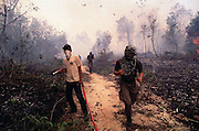 Firefighters and soldiers in the forest outside Balikpapan, East Kalimantan, Indonesia are beaten back by the smoke.<br />