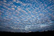 Aquidauana_MS, Brasil...Nuvens no ceu da fazenda Rio Negro no Pantanal...Clouds in the sky in the Rio Negro farm in Pantanal...Foto: JOAO MARCOS ROSA / NITRO