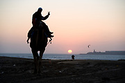 essaouira, morocco, camel on the beach at sunset