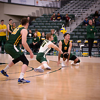 4th year setter Michael Corrigan (11) of the Regina Cougars in action during Men's Volleyball home game on November 3 at Centre for Kinesiology, Health and Sport. Credit: Arthur Ward/Arthur Images