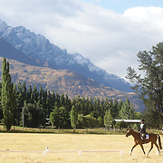 Wayne Harrex on Dreamy As in action during the Dressage event with the stunning backdrop of The Remarkables Mountain Range at the Wakatipu One Day Horse Trials,  Queenstown, Otago, New Zealand. 15th January 2012. Photo Tim Clayton