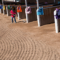 USA, New Mexico, Albuquerque, Man raking dirt inside paddock before start of thoroughbred horse races at The Downs at Albuquerque race track