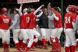01 May 2005..The Birdhouse celebrates in the 2nd inning Homer RandiPatton comes home...ISU Redbirds V UNI (Northern Iowa) Panthers.  Illinois State University, Normal IL