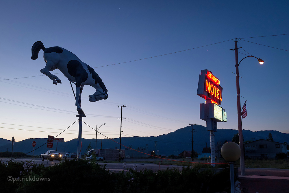 Motel bronc in Bridgeport CA, with the eastern Sierra in the background.