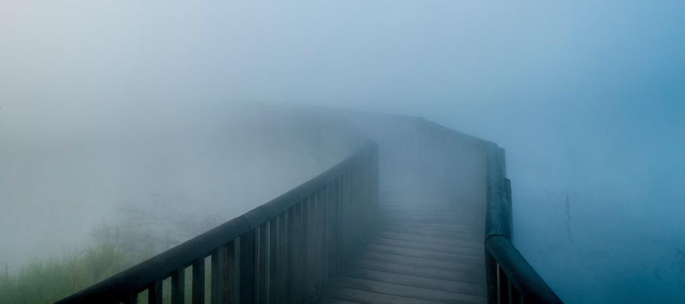 Geothermal steam over Kuirau Park walking track, Rotorua
