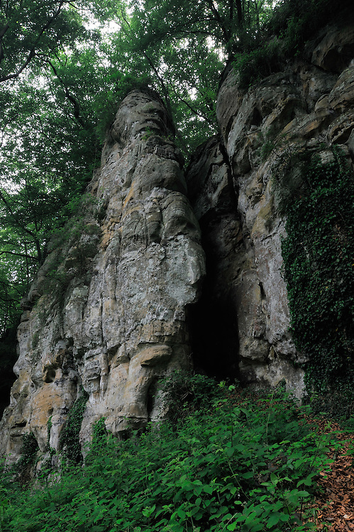 Sandstone formations in a beech forest (Fagus sylvatica), Mullerthal trail, Mullerthal, Luxembourg
