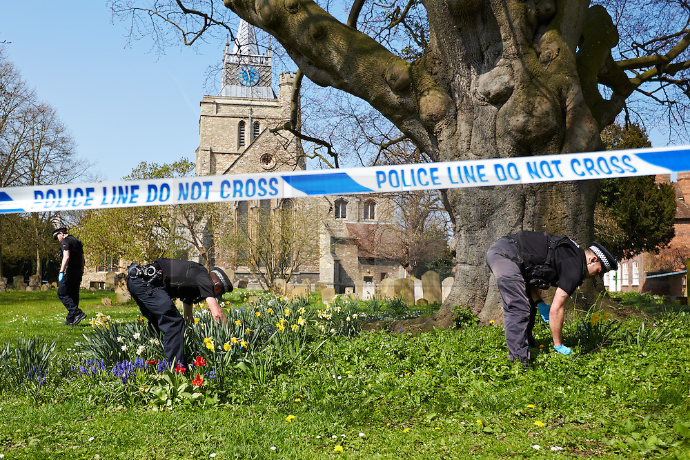 © Licensed to London News Pictures.  25/04/2013. AYLESBURY, UK. Police officers search the grounds of St Mary's Church in Aylesbury. Thames Valley Police are investigating a report received at 6:37pm yesterday (Wed 24th) from a member of the public who believed they had discovered a human ear amongst the graves. Photo credit: Cliff Hide/LNP