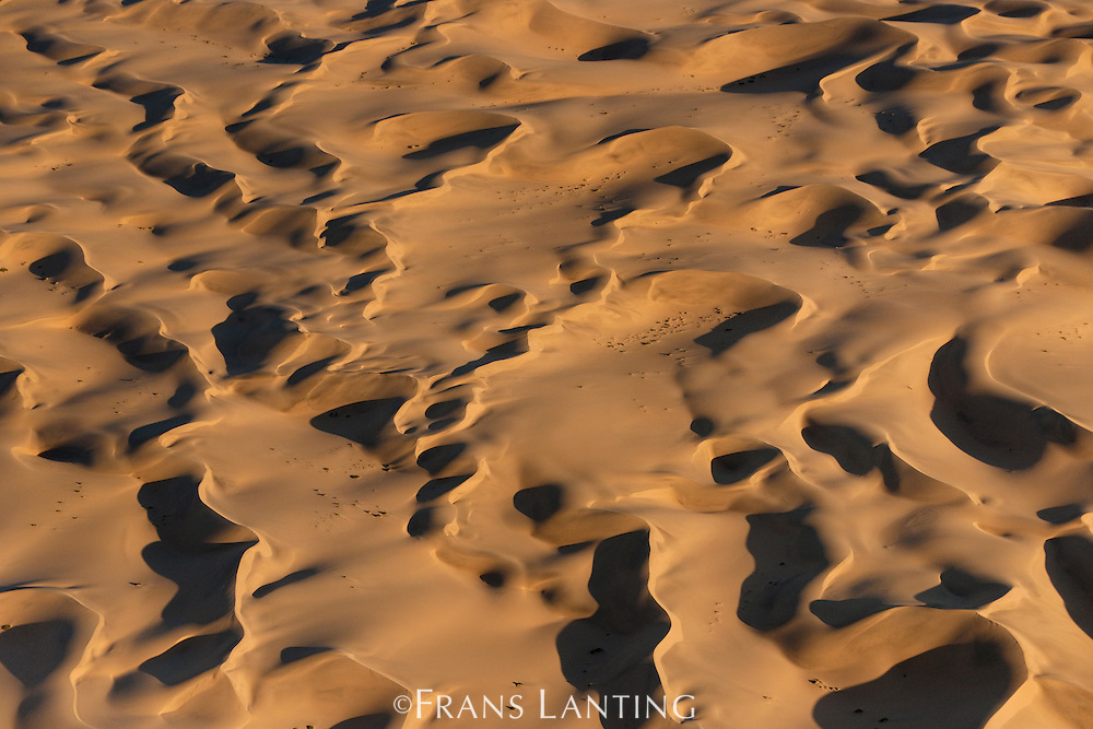 Wind-sculpted sand dunes (aerial), Namib-Naukluft National Park, Namibia