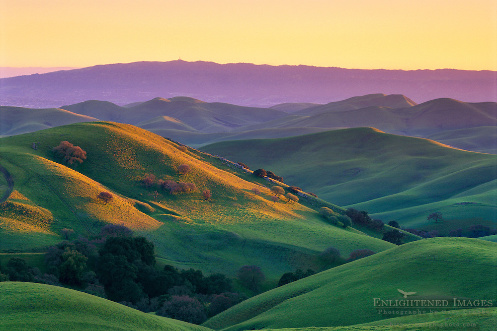 Sunset light on green hills in spring, Tassajara Region, near Livermore Contra Costa County, CALIFORNIA