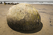 Moeraki boulders, Moeraki, Otago, South Island, New Zealand