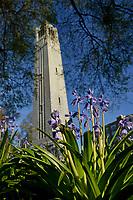 Memorial Belltower and spring flowers.