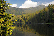 Großer Arbersee, Bergsee, Bayerischer Wald, Bayern, Deutschland | mountain lake Grosser Arbersee, Bavarian Forest, Bavaria, Germany